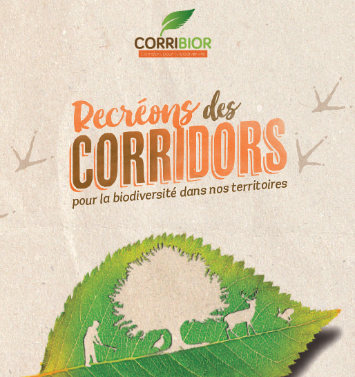 AFAOC présentation projet Corribior