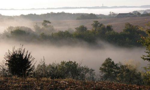 AFAOC-paysages dans la brume